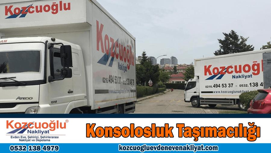 Konsolosluk taşımacılığı İstanbul konsolosluk taşıma nakliye şirketi